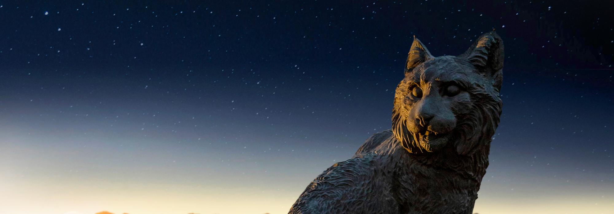 A Wildcat statue is seen lit from behind against a sun-setting background of the Tucson skyline