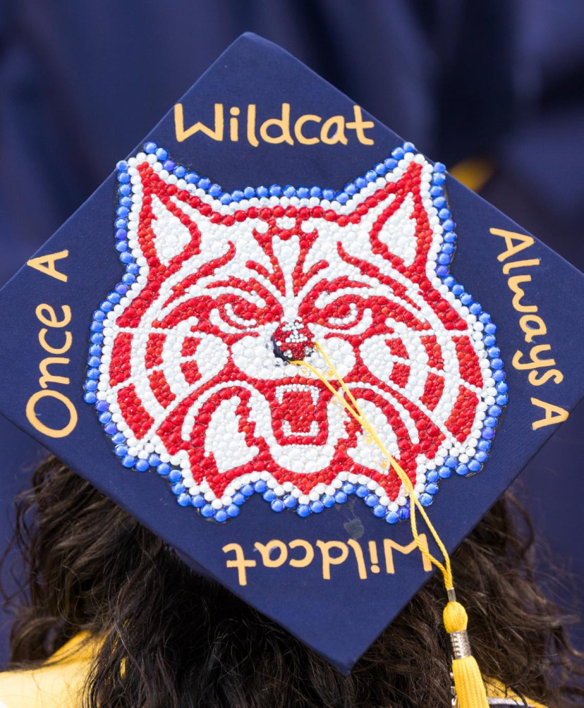 Top of a graduate's cap with a wildcat outline and words around it reading once a Wildcat, always a Wildcat